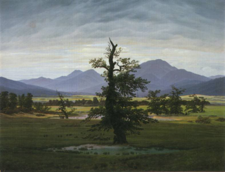 friedrich_solitary-tree.jpg